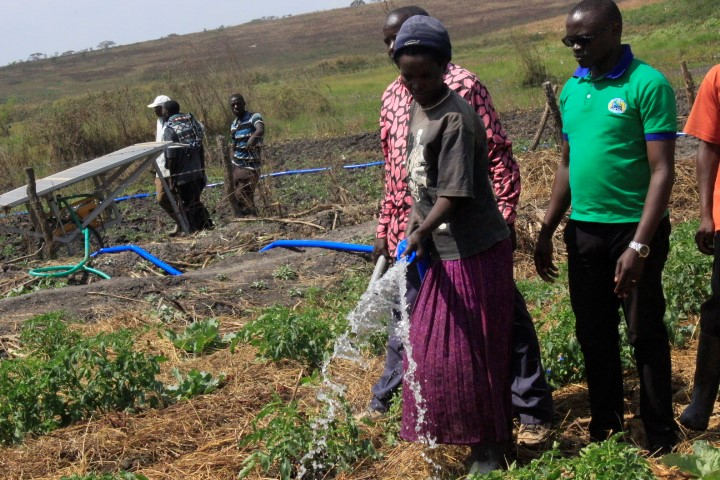 Improving the livelihood of the smallholder farmers by promoting the climate resilient agriculture in Bugesera District