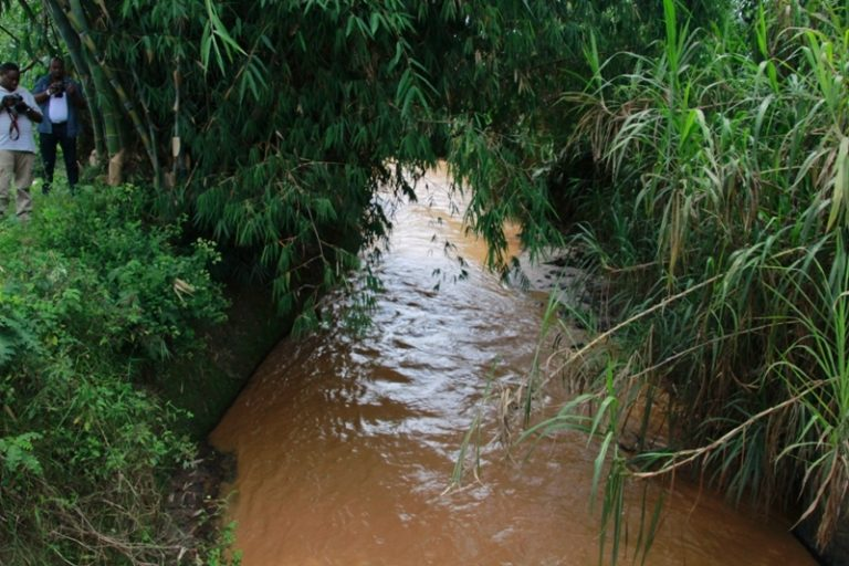 Landscape Restoration and Integrated Water Resources Management in Sebeya Catchment and other Catchments