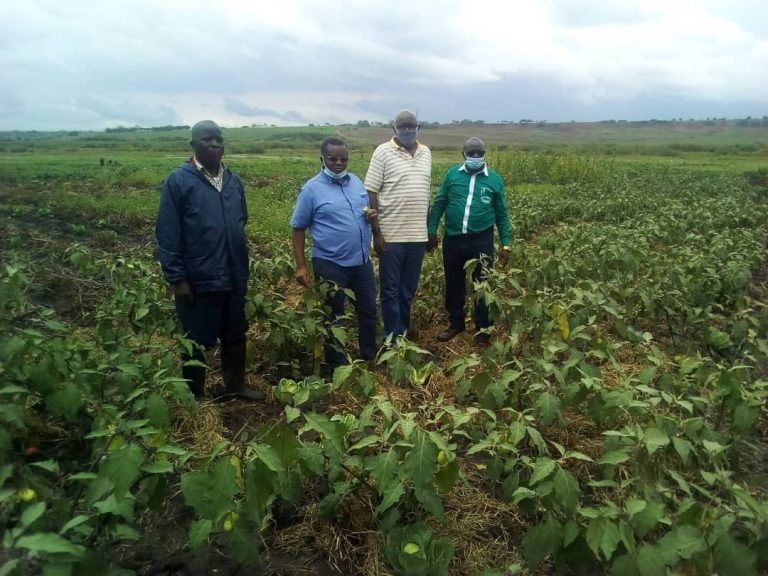 visite sur terrain au Rwanda/ district de Bugesera, secteur de Ngeruka par le Représentant de l'AHDO